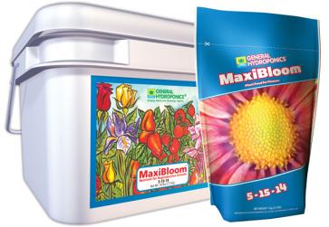 MaxiBloom - Tub 16Lb