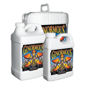 Humboldt Ginormous 2.5 Gallon
