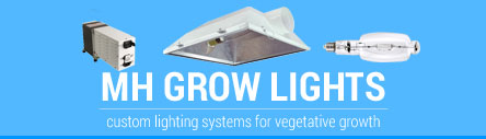 MH Grow Light Systems