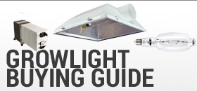 Growlight Buying Guide
