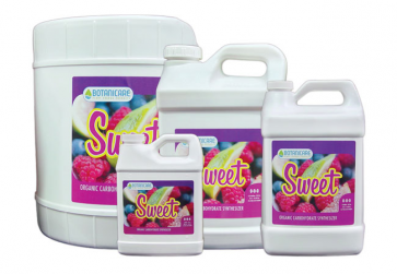 Sweet Berry Quart