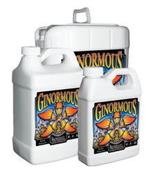 Humboldt Ginormous Gallon