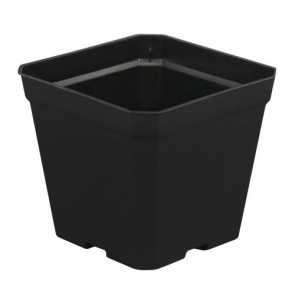 Black Square Pot 4in x 4in x 3.5in
