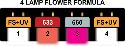 Image of HORTILUX grow lights for flower growth.