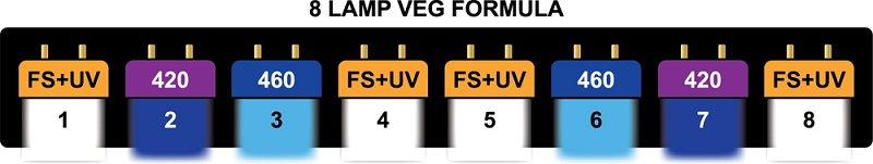 Image of a PowerVEG spectrum for vegetative growth that is powered by HORTILUX fluorescent grow lights.